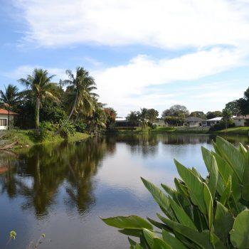 Lake Floresta